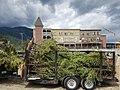 SIX TV series 2 ep 1 Bosnia Pemberton location July trees for set.jpg