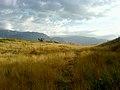 SUMMER - panoramio.jpg