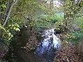 Saint-Avé - ruisseau de Lihuanten (02).jpg