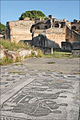 Salle des mesureurs de grains (Ostia Antica) (5899968845).jpg