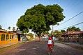 Salvaterra, Pará, Brasil - 2013.10.15 (18).jpg
