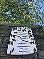 Sanctuary Project plaques, Stow Hill, Newport, September 2018.jpeg