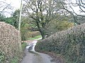 Sanctuary lane drops down to cross the Grindle Brook - geograph.org.uk - 1600404.jpg