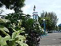 SantaCruz,Lagunajf 9406 14.JPG