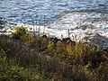 Schäumender Zufluß zum Rhein.JPG