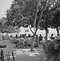 Schaduwrijk terras in de stad Tiberias aan het Meer van Tiberias met groepen man, Bestanddeelnr 255-4090.jpg