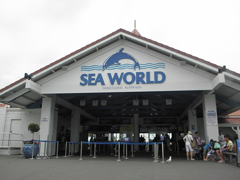 Sea World Gold Coast – A Marine Rehabilitation Space