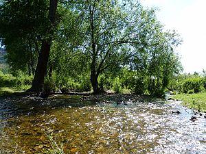Selbe River - River origin