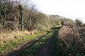 Sewstern Drift near Wyville - geograph.org.uk - 77413.jpg