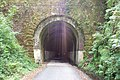 Shaugh Tunnel - geograph.org.uk - 43161.jpg