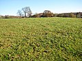 Sheep pasture, Bromesberrow Heath - geograph.org.uk - 1066697.jpg