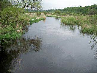 Der Shell River in der Straight River Township (2007)