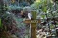 Sign for Loop Track at Moore's Bush in Dunedin KC 010519.jpg