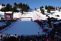 Skiweltcup Slalom in Adelboden.jpg