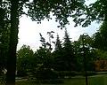 Skwerek przy Mickiewicza - panoramio.jpg