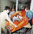 Skylab Solar Shield - GPN-2000-001707.jpg