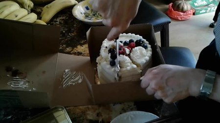 File:Slicing the cake!.webm