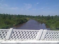 Slovechna River in Narowlya region.jpg