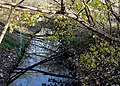 Smestow Brook north of Compton, Wolverhampton - geograph.org.uk - 623982.jpg