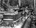 Snoqualmie Mill Co railroad loading logs, Snoqualmie, Washington, ca 1895 (INDOCC 2).jpg