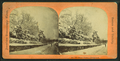 Snow scene--Longwood, from Robert N. Dennis collection of stereoscopic views.png