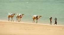 Somália-Educação-Somaliland (6936778013) (2)