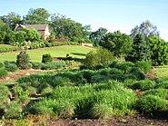 South Carolina Botanical Garden - view 2