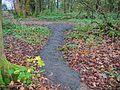 Spier's - Jenny's Path - top end.jpg