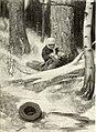 St. Nicholas (serial) (1915) (14782709594).jpg