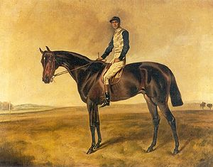 St. Simon (horse) - St. Simon with jockey up
