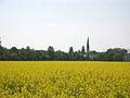 St. Stephan in Berg-am-Laim - hinter Rapsfeld.jpg