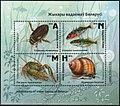 Stamp of Belarus - 2019 - Colnect 856969 - Wildlife in Belarusian Wetlands.jpeg