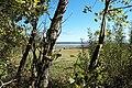 Starnberger See Westufer 789.jpg