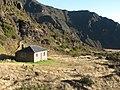 Starr-110913-8294-Plantago lanceolata-habitat and cabin-Holua HNP-Maui (24994428662).jpg