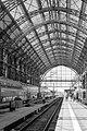 Station (161806629).jpeg