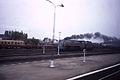 Station Oudenaarde 1985 met stoom III.jpg