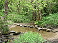 Stepping Stones Over Tributary of Oldhay Brook - geograph.org.uk - 189220.jpg