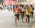 Stockholm Marathon 2013 02.jpg
