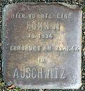 Stumbling stone for a Rommni (Thieboldsgasse 88)