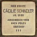 Stolperstein für Cäcilie Schindler (Cottbus).jpg
