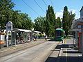 Straßenbahn Linke Brückenstraße 1.JPG