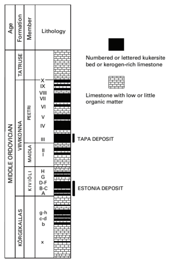 Stratigraphic section of the kukersite deposits.