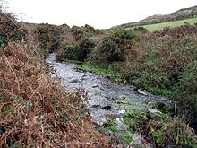 Stream at Lower Bostraze - geograph.org.uk - 88490.jpg