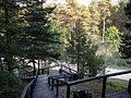 Summer - panoramio (26).jpg