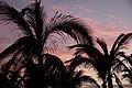 Sunset1 (5492541311).jpg