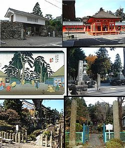 Clockwise from top: Shigekado Takenaka's Jinya, Nangu Taisha, Tairyo Shrine, Site of Morichika Chosokabe's Jinya, Mineral Spring in Tarui, Picture of Tarui Traditional Inn in Edo Period