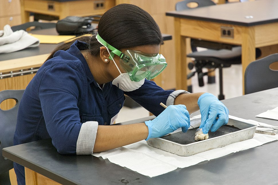 Teen-Girl-Student-Dissecting-Animal-Eye