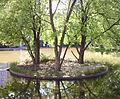 Teich am Rathauscenter Ludwigshafen.jpg