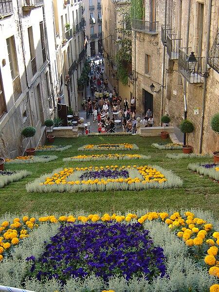 File:Temps de flors 2007 Edició 52 012.jpg