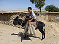 Tepakoul-Garçon sur son âne.jpg